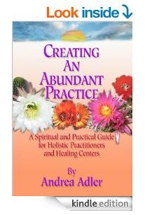 Creating an Abundant Practice book by Andrea Adler